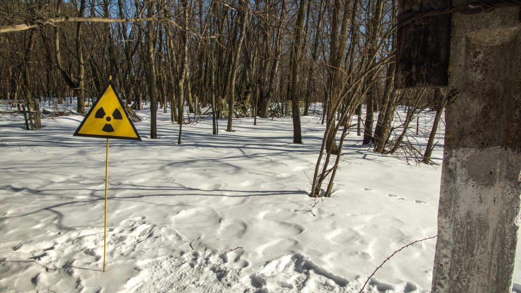 Las w śniegu. Na pierwszym planie widać znak ostrzegawczy przed promieniowaniem radioaktywnym.