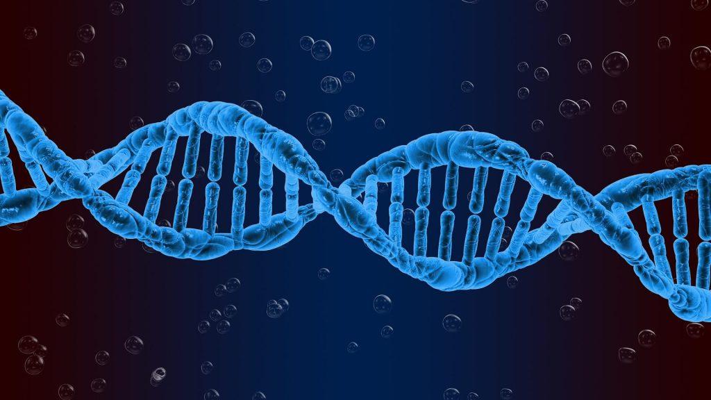 Nić DNA.