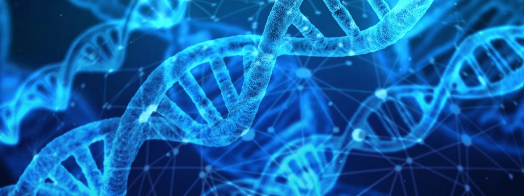 Nić DNA - geny